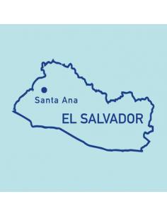 Buy Coyard Coffee Roasters San Juan Bosco El Salvador in Saudi